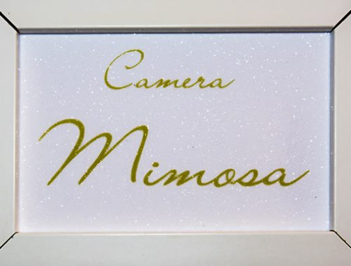 Camera Mimosa